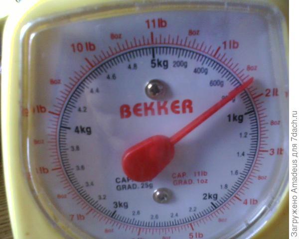 Общий вес