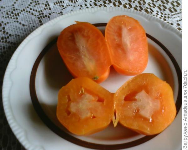 Плоды имеют ярко оранжевый  цвет