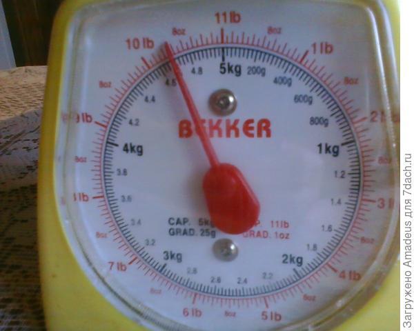 общий вес плодов