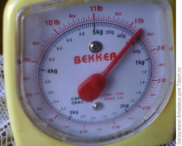 600 грамм
