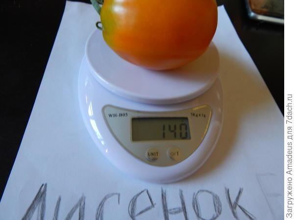 1 томат весом 140 г