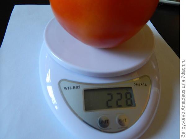 228 грамм