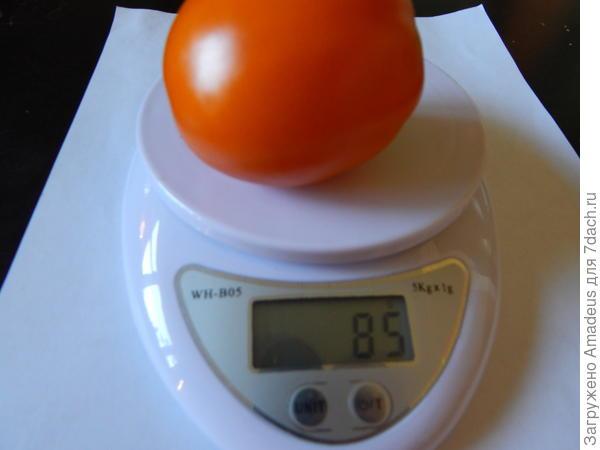 другой весом 85 г