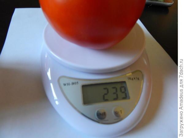 239 грамм
