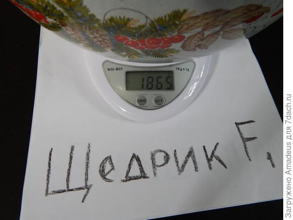 1 кг 865 г - тара 669 г = 1 кг 196 г
