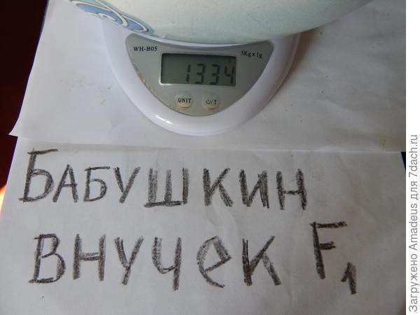 Общим весом 1 кг 334 г  -  тара 669 г = 665 г