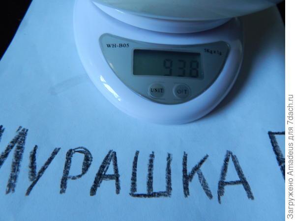 Вес тары 393 г