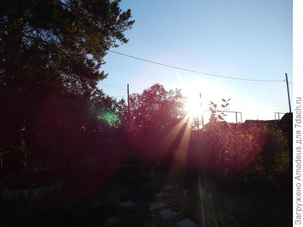Это тебе для поднятия духа! Восход солнца для восходящей звезды!!!!!