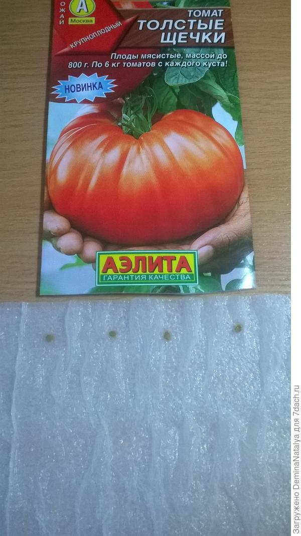Раскладываем семена