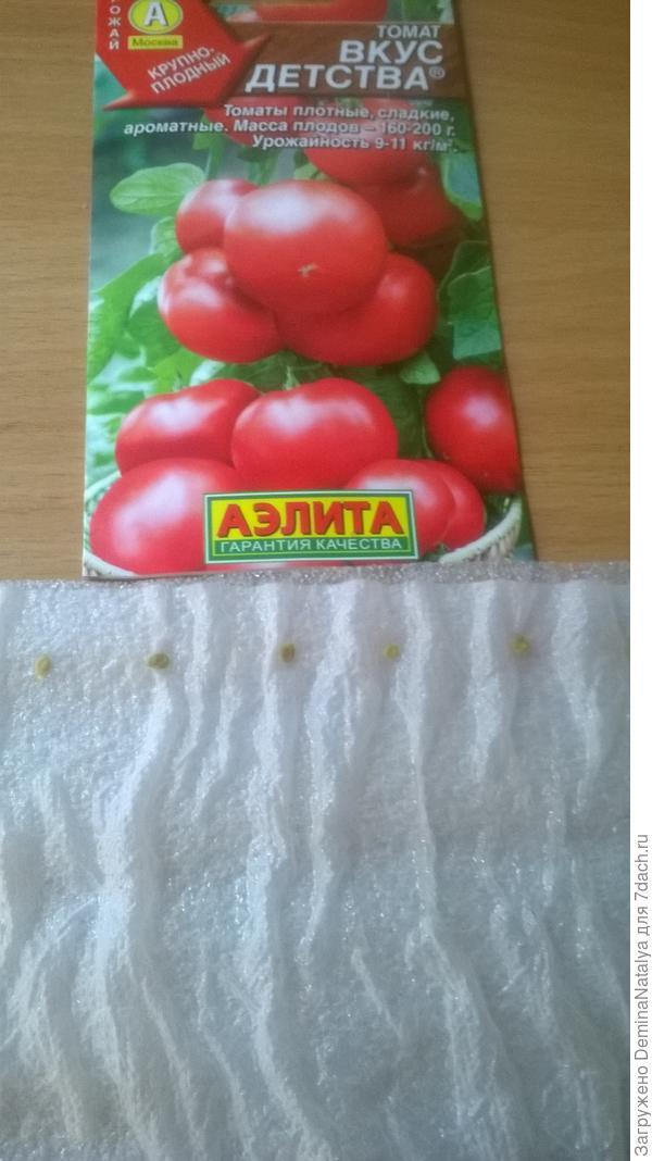 Раскладываем семена на бумагу