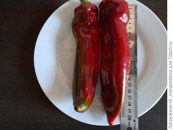 Бомбический сладкий перец Рамиро