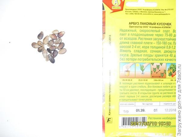В пачке насчитала 20 семян. Для тестирования отобрала 6 штук.
