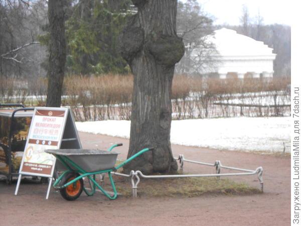 Берем велосипеды.