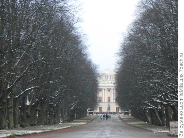 Подъездная аллея к дворцу.