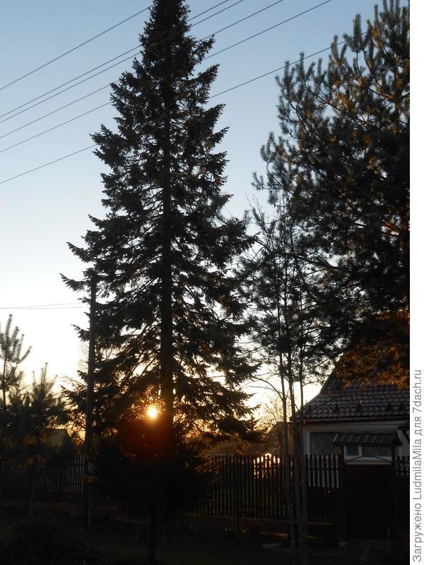Закат солнца.Ноябрь.