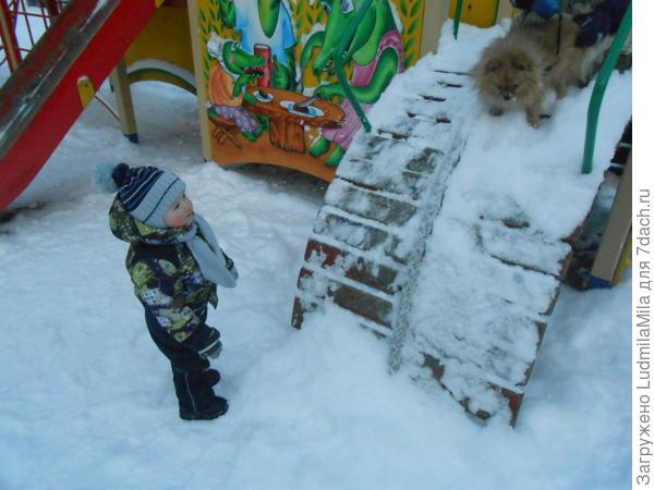 Выгуливаем.Кто детей,а кто собак)))))