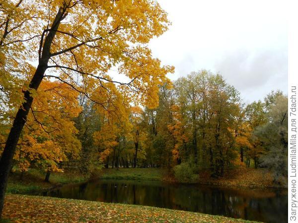 Колдовской парк