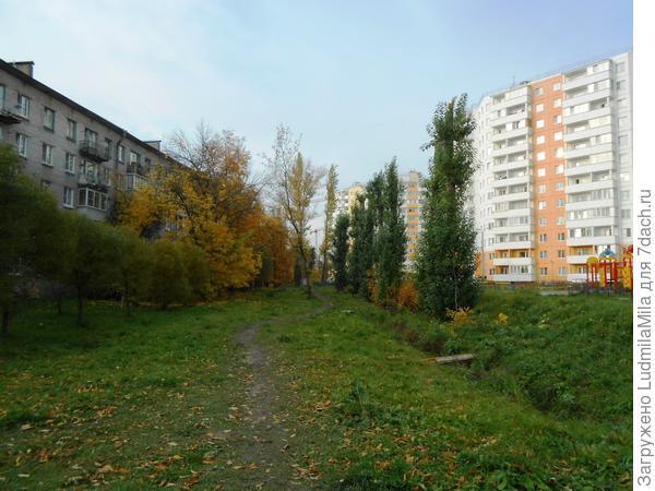 Справа лето,слева осень