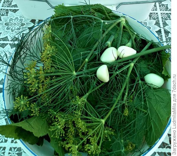 Огурцы в сладком маринаде на зиму. Пошаговый рецепт с фото