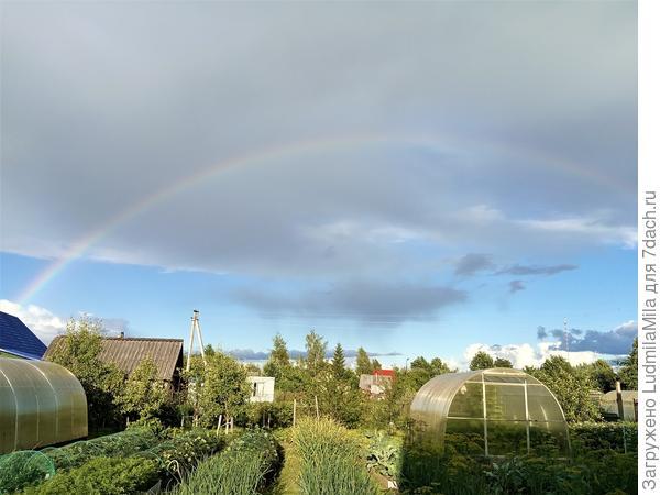 Ах,как хороша радуга над дачами...бросив все дела-любуемся небесной красотой...
