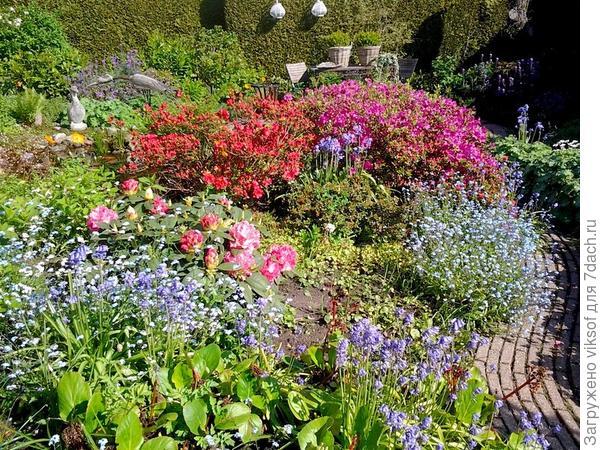 Узкая дорожка утопает в майских цветах
