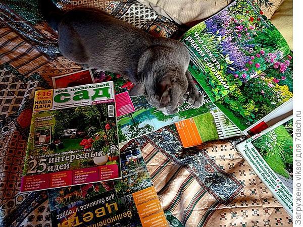 Вот так и валяемся с Витасом, рассматривая журналы