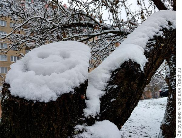 у нас сегодня снега много выпало. можешь снежком в кого-нибудь залепить