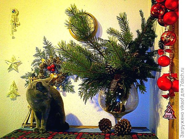 надо присмотреться, думу думает мой кот! Жаль, что не сфотографировала, когда вернулись домой: в прихожей было ...посленовогодье, бокала не стало!