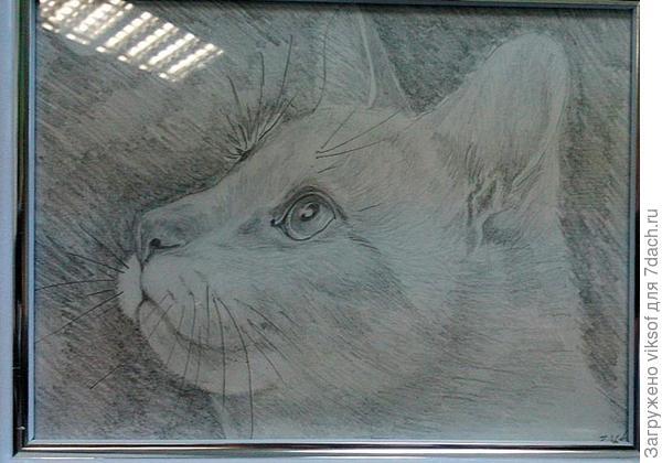 портрет Рыжего (карандаш,Yana_V1)