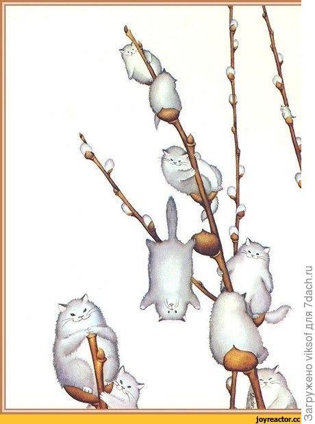 ...с днём весны и котиков