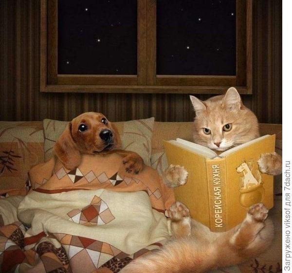 ...учитесь, учитесь! (фото из интернета)