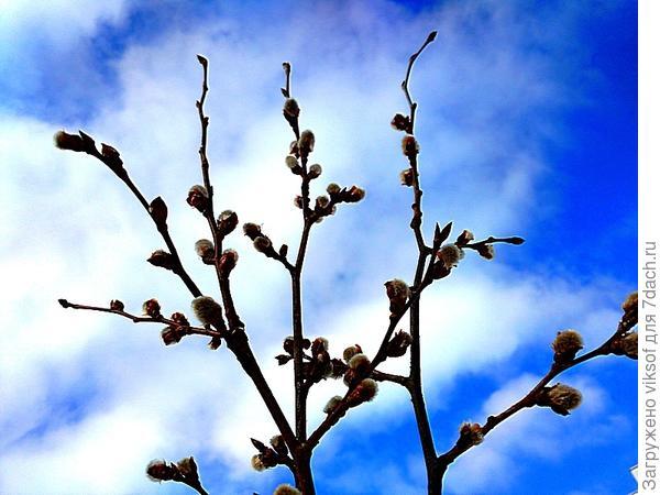 а Весна уже идёт