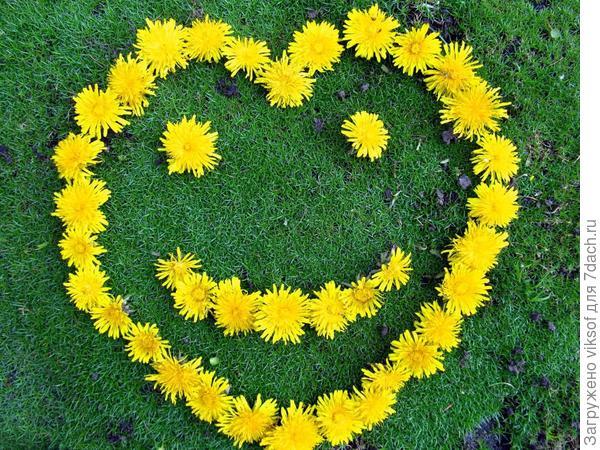 Всем весеннего настроения... и улыбка, без сомненья...