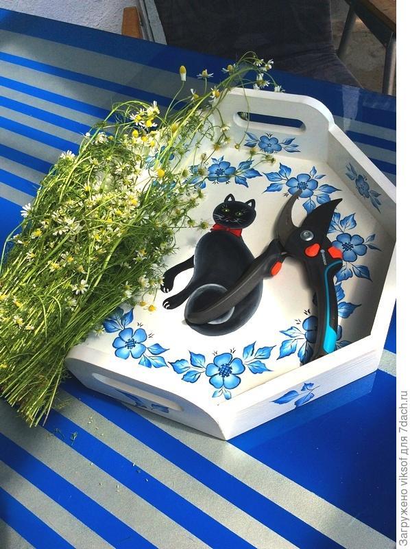 """...а секатор-то за победу в конкурсе с журналом """"Мой прекрасный сад"""", интересно бы узнать Оленьке, (OlgaDa) понравилась эта фотография?!"""