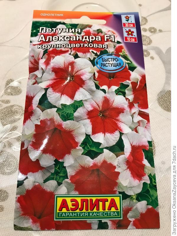 Семена петунии Александра