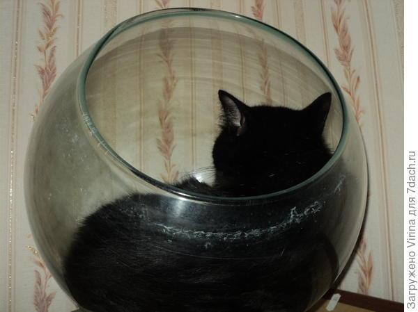 Матильда спит