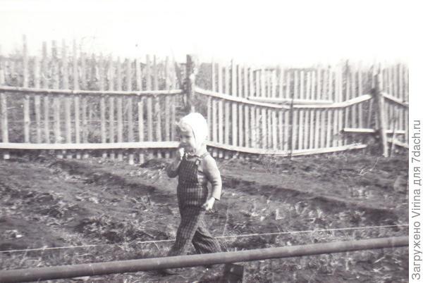 Я - инспектор (1977)