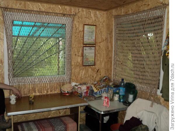 шторки на окнах