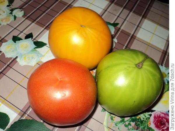 первые помидорчики