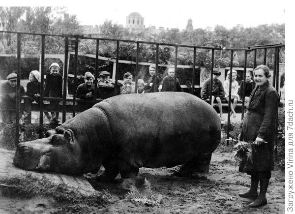 Ленинград. 1943 год. (фото из интернета)
