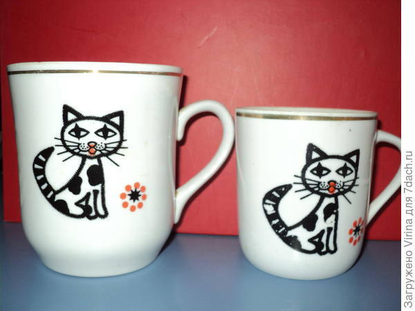 Коты и чай