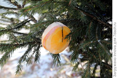 Апельсинка во льду