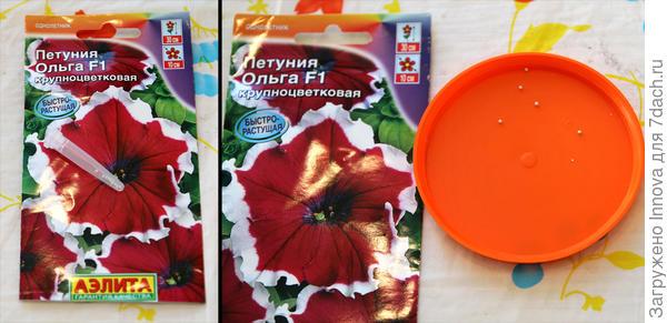 Дражированные семена петунии Ольга F1