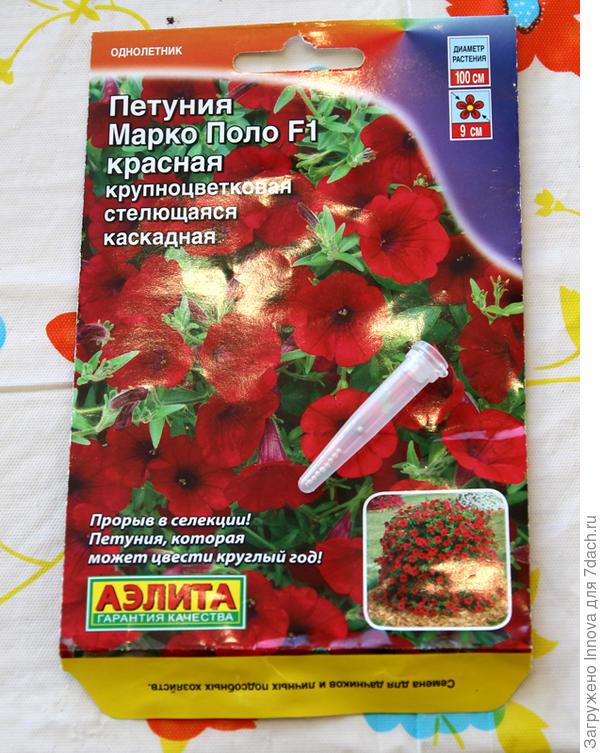 Пробирка с семенами петунии Марко Поло F1 красная