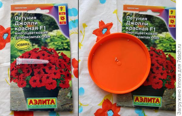 Дражированные семена петунии Джолли F1 красная