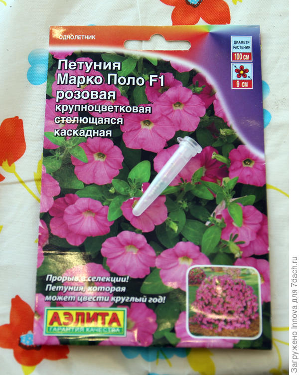 Упаковка Марко Поло Розовая