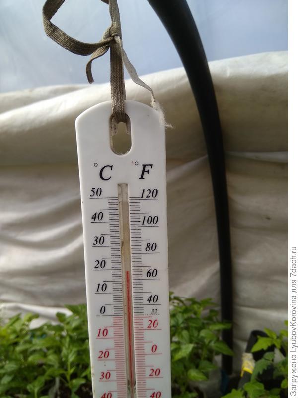 температура под укрытием