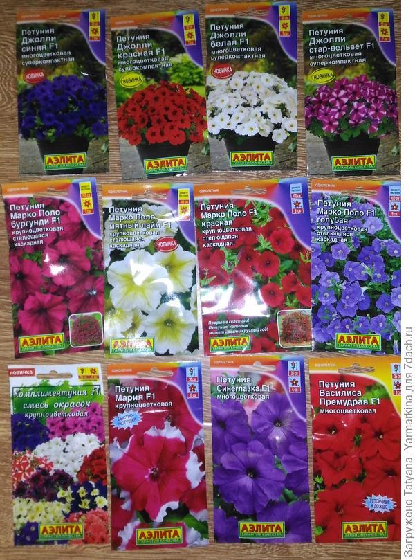 12 пакетов семян