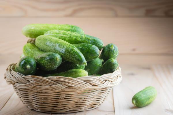 Секрет хорошего урожая — правильные сорта и агротехника