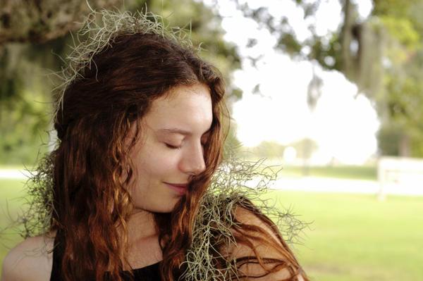 Тилландсия уснеевидная — «волосы ангела» — растение, у которого нет корней